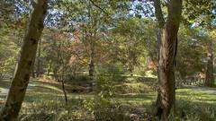 Gibbs Gardens (randyherring) Tags: gibbsgardens ballground ga cherokeecounty nature beauty