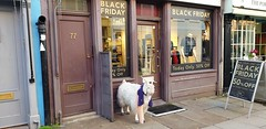 'There's Black Friday' And There's 'Window Wednesdays' (standhisround) Tags: portobelloroad shops window windowwednesdays goat clothes westlondon building doors outdoors blackfriday sale signs pipes hww