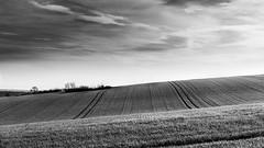 Landscape of French Vexin (Gilles B. Photographe) Tags: france noiretblanc paysage landscape nature outdoor bw blackandwhite nb iledefrance hodent îledefrance