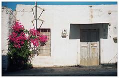 florales Willkommen (fluffisch) Tags: fluffisch timbaki crete greece leica leicam6 summiluxm35f14 preasph summilux 35mm f14 rangefinder messsucher analog film kodak portra800