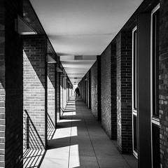 At the centre of it all... (Özgür Gürgey) Tags: 11 2016 50mm bw d750 hamburg nikon speicherstadt architecture grainy repetition shadow underpass vanishingpoint