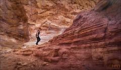 Canyon Walk (www.johanhannes.com) Tags: redcanyon desert rocks women walk walking