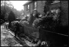 The Street (MartPics1968) Tags: leicam42 summicronm35mmf2asph blackwhite loosevalley maidstone house woman woodenfence 35mmfilmcamera 35mmfilm 35mm streetphotography kodakd76 kodaktrix400