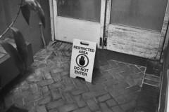 ---_00126 (@CorySchmitz) Tags: contax g2 black white film kodak trix