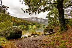 Viewpoint over Grasmere (Keith now in Wiltshire) Tags: lake grasmere lakedistrict nationalpark shore water seat bench tree rock woodland reflection mist cloud cumbria england english landscape