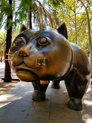 Barcelona, El Gato del Raval by Colombian artist Fernando Botero (Mila Fonteyn) Tags: barcelona raval ravalcat elgatodelraval rambladelraval rambla sculpture botero boterocat fernandobotero statue landmark