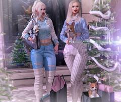 X-mas Shopping (nannja.panana) Tags: addams birth cncreations catwa genus letredoux maitreya mila nannjapanana rezzroom tmp tutys