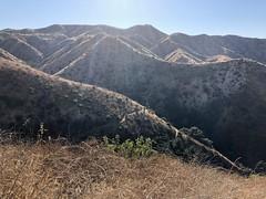 IMG_6983 (Kent MacElwee) Tags: losangeles la hiking nela northeastlosangeles socal southerncalifornia ca usa