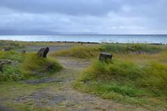Beach Path (Sotosoroto) Tags: iceland norðurland norðurlandvestra blönduós brimslóð guesthouse húnafjörður arctic arcticocean