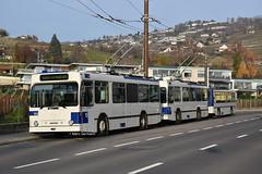 Trolleybus NAW BT-25 n°753 en L Bus - Ecole et Trolleybus NAW BT-25 n°784 en service sur la ligne 9. © Marc Germann (Marc Germann) Tags: trolleybusnawbt25 retrobus convois nawhesssiemens transportspublics transport man lutrycorniche articulé articulation vanhool autobusvanhoolnewag300 ligne9 ligne54 ligne415 transportspublicslausannois soleil par brise naw fbw remorques hesskièpe hessag