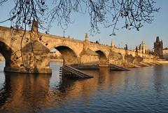 Karlův most ve zlatě... (ondras brabec) Tags: karlův most charles bridge prague gold river řeka vltava praha