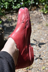 Red Chuvas the end (welliesfan1) Tags: laarzen leaky wellies wellingtons wellworn galoshes wellieshoes welworn wellused chuva bottescaoutchouc regenlaarzen rubberlaarzen regenstiefel rubberboots ripped rainboots wornout waterlaarzen wornoutsoles gummistiefel trashed stiefel