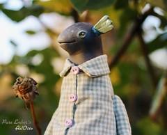 AxlOtto (pure_embers) Tags: pure laura embers doll dolls england uk pureembers photography photo art cute whimsical axolotl lapka arts portrait artdoll sculpture