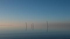 no wind (robvanderwaal) Tags: slijkgat natuur sereen calm serene nature reflection reflectie noordzee pole quiet water stokken sea kalm northsea blue nederland netherlands lucht hellevoetsluis westvoorne robvanderwaalphotographycom stok sky seascape stil 2019 poles zee