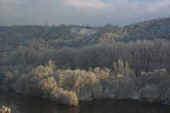 winter day (Slávka K) Tags: snow sunnyday winter forest lake woods trees moretrees light view landscape natur