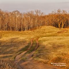 April_Sheyenne National Grasslands (roxiesplacephotography) Tags: mapleton nd usa horizonscalendar2021