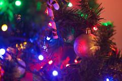 (mokastet) Tags: mokastet christmas christmaslights xmas lights colors denmark julelys