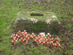 Poppy Crosses, St Mary's Priory Church, Church Street, Usk 4 December 2019 (Cold War Warrior) Tags: remembrance poppy usk churchyard graveyard