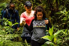 PROGRAMA BORBOLETA AZUL - OUTWARD BOUND BRASIL (Outward Bound Brasil) Tags: apae borboletaazul obb outwardbound