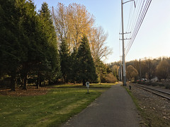 Duwamish Trail near Duwamish Longhouse and Cultural Center (Seattle Department of Transportation) Tags: seattle sdot transportation duwamish trail near longhouse cultural center tracks trees