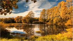 Herbst am Teich (linke64) Tags: thüringen teich deutschland germany gras himmel wolken wald wiese wolkenhimmel wasser bäume baum blätter herbst laub