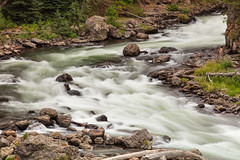 Firehole River Bend (Duncan Rawlinson - Duncan.co) Tags: 16fopjzkccuv4zqqdgdnpyn1putarduwml 5dsr america canon canoneos5dsr duncanrawlinson duncanrawlinsonphoto duncanrawlinsonphotography duncanco fireholeriverbend landscape montana nationalpark photobyduncanrawlinson shotwithcanoneos5dsr spring summertrip2018 usa unitedstatesofamerica wyoming yellowstone yellowstonenationalparkwyomingunitedstatesofamerica american beautiful beauty bend brook creek firehole forest geology httpsduncanco httpsduncancofireholeriverbend natural nature outdoor outdoors river rivulet rocks scenic stream thermal united water wilderness woods yellowstonenationalpark unitedstates