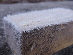 DSCN8120 (keepps) Tags: switzerland suisse schweiz fribourg montbovon winter frost