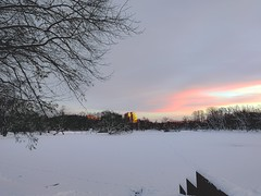 Cold sunrise (Mikhail Aleksandrov) Tags: sunlight clouds sky building sunrise horizon trees ice snow winter shore water morning mobilephotography mobile honor9 saintpetersburg russia park зима снег утро восход берег вода лёд лед деревья дерево улица парк город city санктпетербург россия