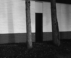 Black Door, Beaverton, Oregon (austin granger) Tags: door beaverton oregon correspondence black trees film sidewalk lastlight gf670