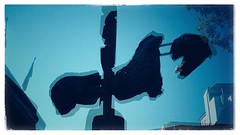Italian Diary - Horses In The Sky (Anika Mi) Tags: fortedeimarmi italy bluesky horses sculpture