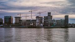 Rijnhaven zuidzijde (Codrico Rotterdam BV ) (Stevox-1) Tags: m9 voigtlander35mmf20 sky water maas factory skyline cityscape building voigtlander voigtlander35mmf17 35mm ultron