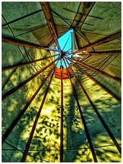 The Circle of Poles (plismo) Tags: plismo bonair ontario canada teepee pole wood insideteepee georgianbay nativeteepee bluesky woodpoles