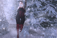 .Winter Love. (Peekaboo McKeenan) Tags: pose fair winter holiday wetcat christmas miss chelsea anthem