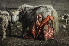 Kyrgyz girls in Seki, Pamir, Afghanistan. (Raúl Barrero fotografía) Tags: people portrait girls afghanistan yak milk working pamir kyrgyz