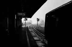 Misty contemplations (david.hayes77) Tags: mist mood exeter exeterstdavids devon southwest westofengland 2019 autumn monochrome mono bw blackandwhite fog atmosphere atmospheric 2f15 arty black dark moody negativespace sombre