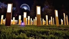 Panneaux lumineux avec grande roue en arrière plan (yanngayon) Tags: nuit night design light street city landscape nikon lumière ville paysage lumineux