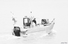 Retour de pêche à La Rochelle !!! (François Tomasi) Tags: larochelle boat bateau françoistomasi 2019
