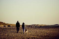 Callantsoog (Jos Mecklenfeld) Tags: zee meer sea noordzee nordsee northsea strand beach sunset sonnenuntergang zonsondergang sonya6000 sonyilce6000 sonye55210mmf4563oss sel55210 callantsoog noordholland netherlands