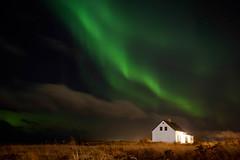 Norðurljós (katrinasa22) Tags: grass night stars city evening northernlights lights iceland westside auroraborealis northern view house borealis sky green reykjavík aurora clouds seaside