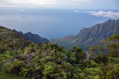 _5D39536 (dendrimermeister) Tags: kauai hawaii waimea canyon scenery landscape color napali coast