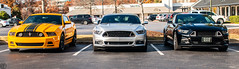Mustang group (patrick cleere) Tags: patrickc5 patrickcleere patrickcleerephotography automotive automobile cars car ford mustang