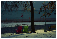after the lights come on (mcfcrandall) Tags: evening lights muskokachairs beach snow december trees leaves shadows bench lakeontario lake water shore toronto