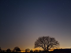 Night Landscape (oldsnake977) Tags: tree landscape night astro pixel colors