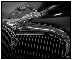 Streetside Classics 11 (4 Pete Seek) Tags: classic classiccars classiccruisers streetsideclassics cars auto blackwhite blackandwhite whiteandblack lithiasprings lithiaspringsgeorgia 34fordconvertible