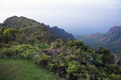 _5D39531 (dendrimermeister) Tags: kauai hawaii waimea canyon scenery landscape color napali coast