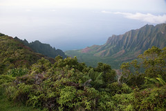 _5D39532 (dendrimermeister) Tags: kauai hawaii waimea canyon scenery landscape color napali coast