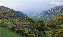 Kalalau_Pano_02 (dendrimermeister) Tags: kauai hawaii waimea canyon scenery landscape color napali coast