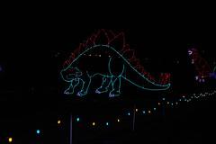 Speedway in Lights (csnp1) Tags: bristol christmas holiday lights speedway tn us
