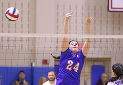 IMG_8157 (SJH Foto) Tags: girls high school volleyball garden spot southern lehigh state semifinals aaa