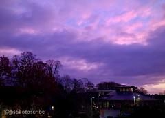 Purple skies (stewardsonjp1) Tags: phone horizon weather cold winter uk yorkshire york dawn purple sky